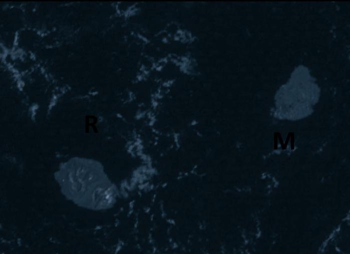 Nos deux bijoux vus ce matin à 8h30 par le satellite indien Insat3d