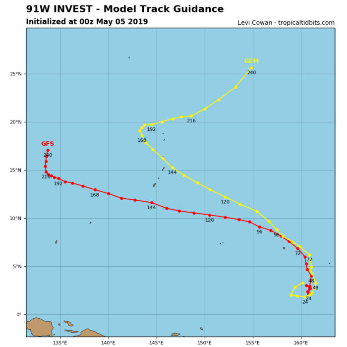 GUIDANCE(MODELS) FOR INVEST 91W