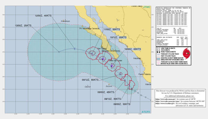 EASTERN PACIFIC. TD 15E. WARNING 2 ISSUED AT 08/04UTC. CURRENT INTENSITY IS 30KNOTS AND IS FORECAST TO PEAK AT 65KNOTS/CAT 1 BY 10/00UTC.
